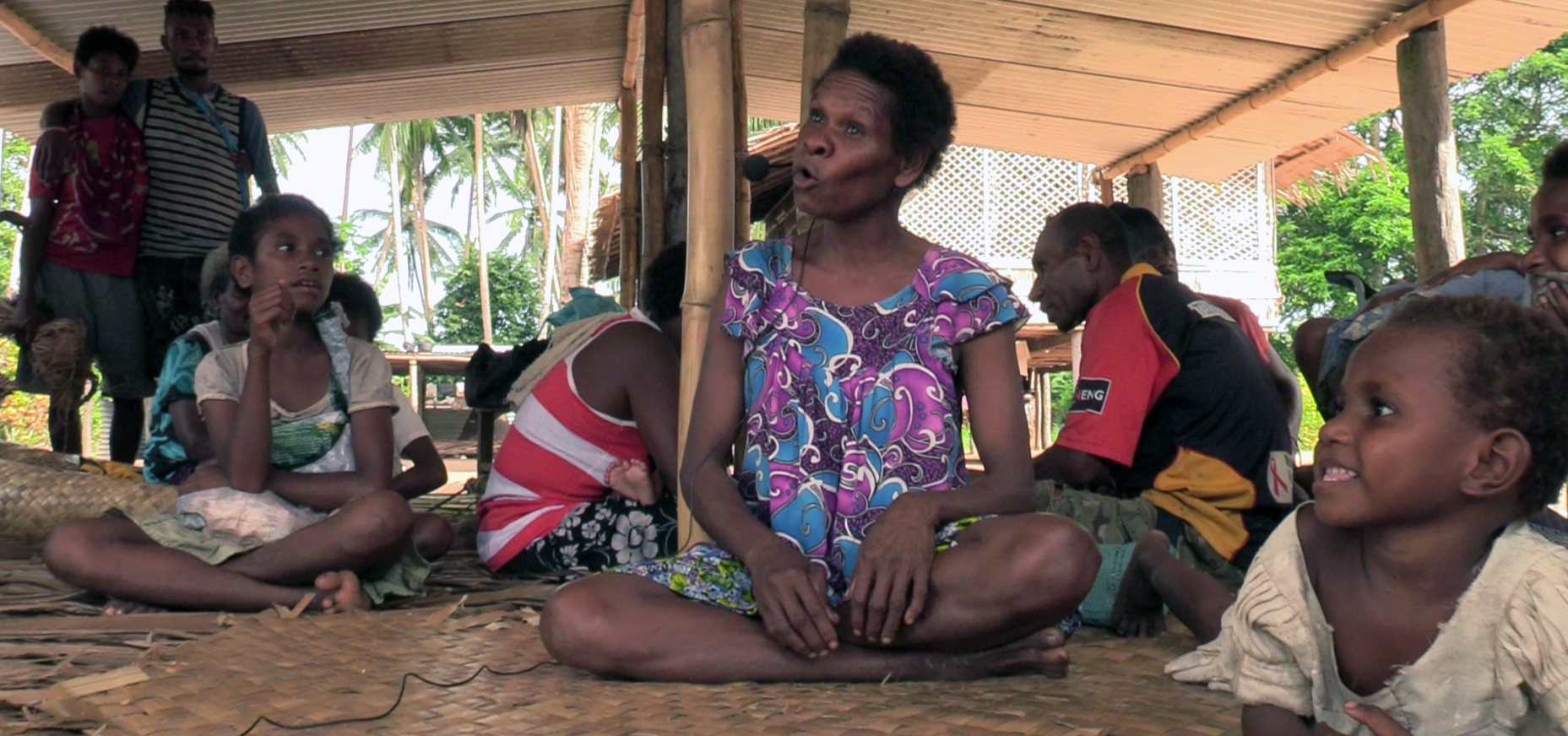 A comprehensive documentation of Bine - a language of Southern New Guinea by Christian Doehler
